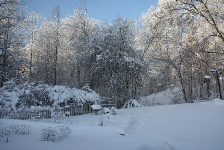 Winter In Indiana 001
