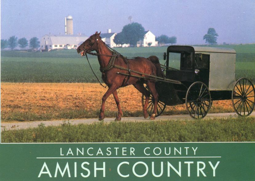 Being Amish….