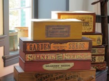 Shaker Seeds were very famous during those years