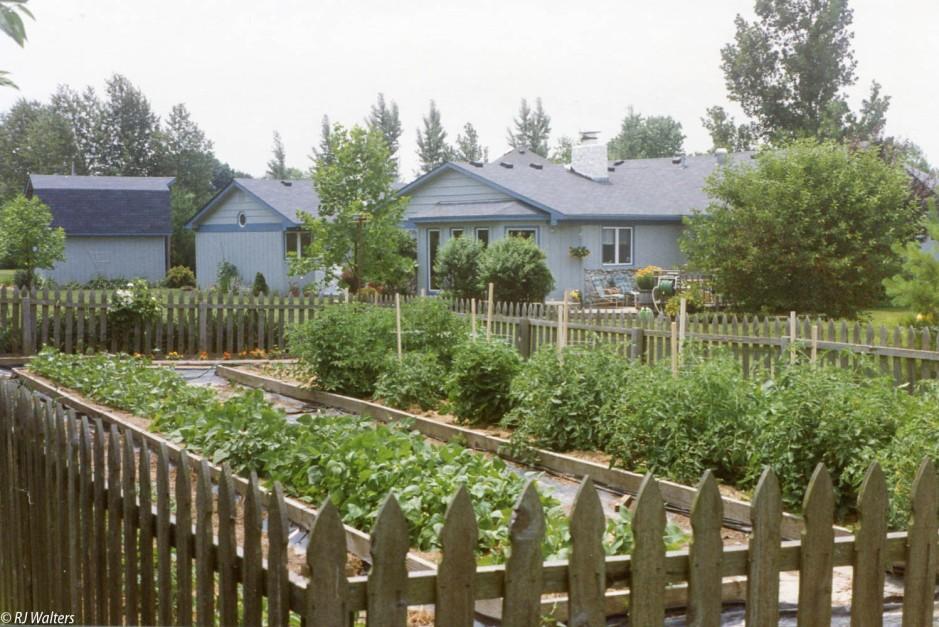 1993 Garden