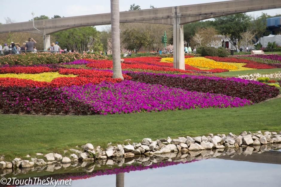 Disney Flowers.jpg