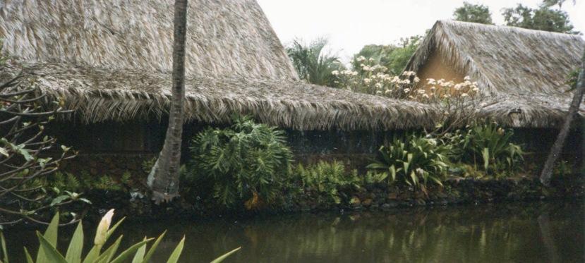 CoCo Palms…