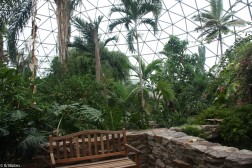 des-moines-botanical-center-11