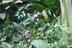 des-moines-botanical-center-7