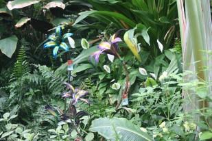 des-moines-botanical-center-7
