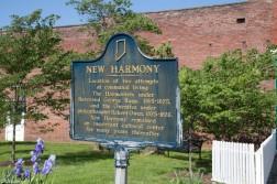 new-harmony-19