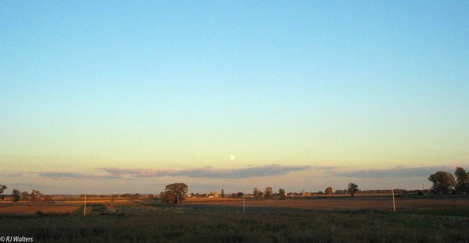 Hinterland Beauty.jpg
