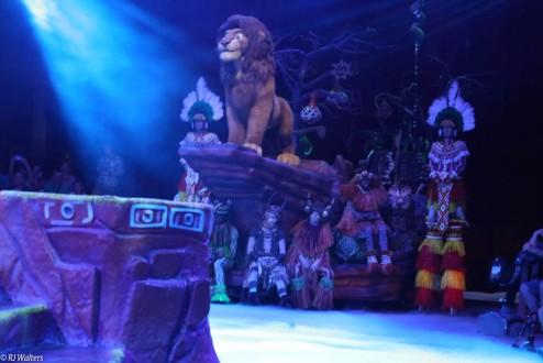 Lion King-8
